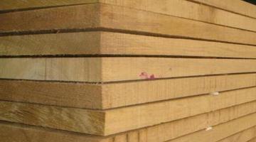 Дървообработване в Сърница-Велинград-Infocall.bg