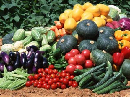 Безопасност на храните в Монтана - Областна дирекция по безопасност на храните в Монтана