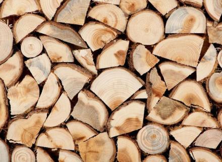 Дърва за битови нужди в Дупница - Коб 08