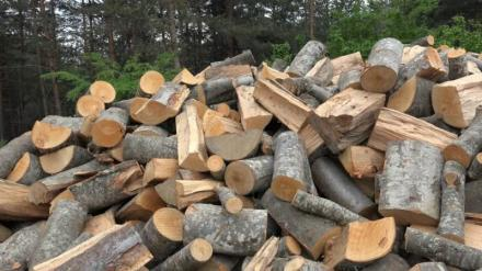 Дърва за горене в област Бургас - Примо Транс