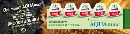 Дистрибуция семена София - Пионер Семена България