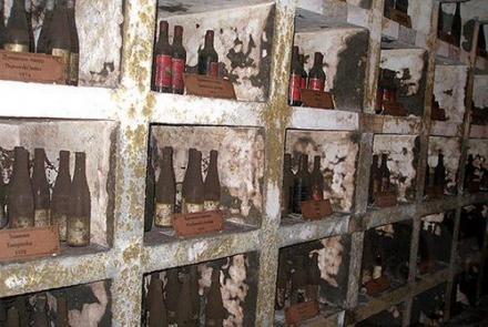 Институт по лозарство и винарство в Плевен - Институт по лозарство и винарство