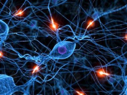 Лекар специалист невролог в Смолян - Невролог Смолян
