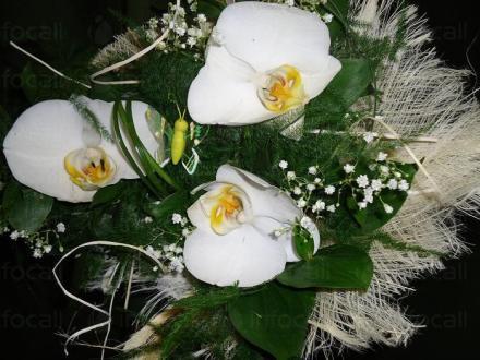 Продажба и доставка на цветя в Бургас и Айтос  - Цветя Бургас