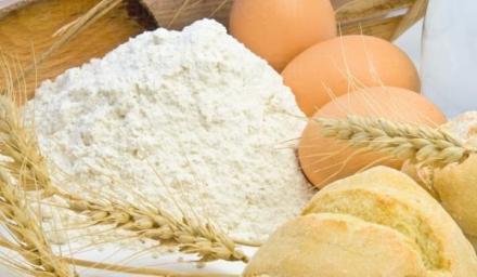 Производство и търговия с брашно с. Доброплодно, област Варна - Агромел