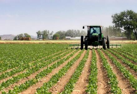 Производство и търговия със селскостопанска продукция в село Малина-Генерал Тошево - ПТК Плодородие