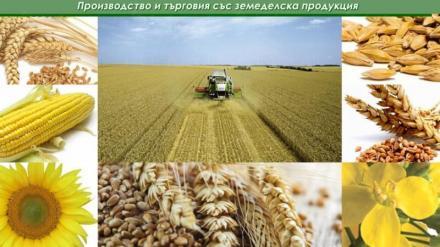 Производство и търговия със зърнени култури в община Балчик - Кооперация Гурково