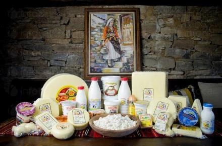 Производство на млечни продукти - Мандра Жълтуша