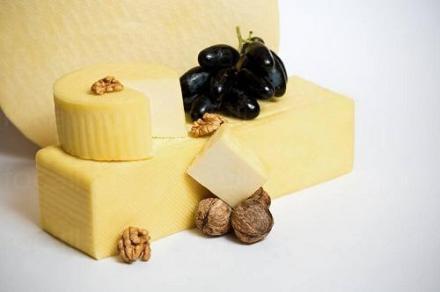 Производство на млечни продукти във Враца - Екопродукт Мегия ЕООД