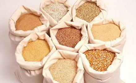Производство селскостопанска продукция в Търговище - Агровариант ЕООД