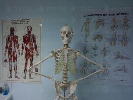 Рехабилитатор и кинезитерапевт в град Варна - Phisio Health