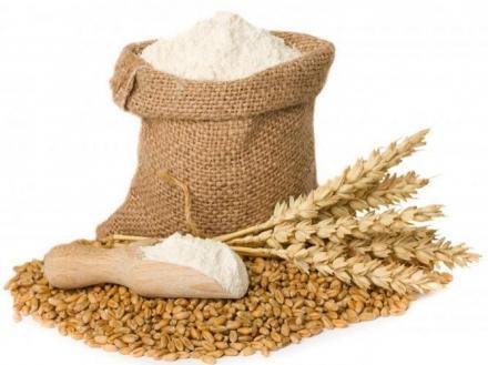 Съхранение на зърно и производство на брашно във Враца - Консорциум Агробизнес АД