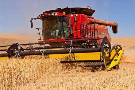 Селско стопанство в Силистра - Агровин ЕООД