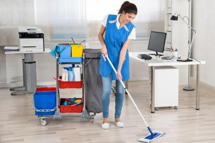 Следремонтно почистване в град Пловдив - Димега