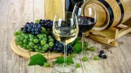 Винопроизводство Поморие - Легенд Естейт  ООД