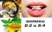 Аптеки Б - 2 и Б - 4