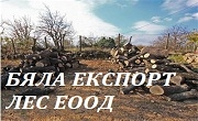 Бяла Експорт Лес ЕООД