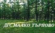 ДГС Малко Търново
