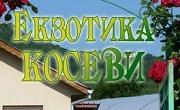 Екзотика Косеви ООД