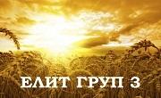 Елит Груп 3 ООД