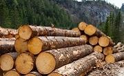 Дървен материал Ардино
