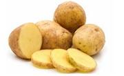 Kartofki.com - Infocall.bg