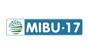 Мибу 17
