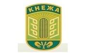 Община Кнежа