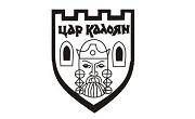 община Цар Калоян - Infocall.bg