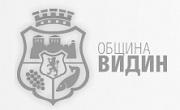 Община Видин