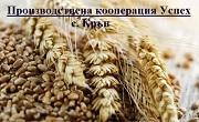 ПК Успех - Крън