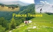 Райска Тишина - Infocall.bg