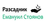 Разсадник Емануил Стоянов