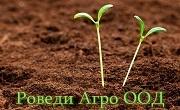 РОВЕДИ АГРО ООД