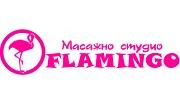 Студио Фламинго