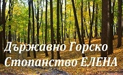ТП ДГС Елена