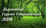 ТП ДГС Лом