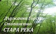 ТП ДГС Стара река