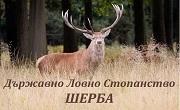 ТП ДЛС Шерба