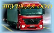 Тунела ООД - Infocall.bg