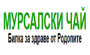 Любен Ушев - Infocall.bg