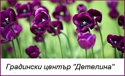 Градински център Детелина - Infocall.bg
