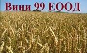 Вини 99 ЕООД - Infocall.bg