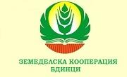 ЗК Бдинци - Infocall.bg