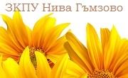 ЗКПУ Нива Гъмзово