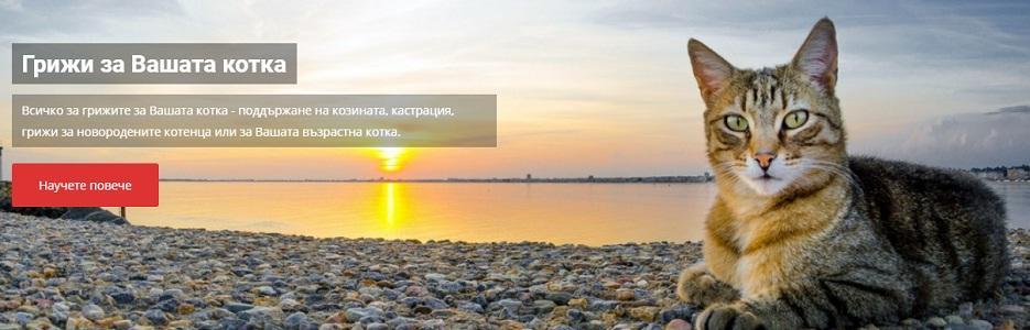 ИКА ЕООД - Infocall.bg