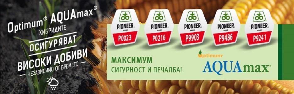 Пионер Семена България - Infocall.bg