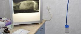 Ветеринарен рентген и ехограф в Стара Загора - Вита Вери