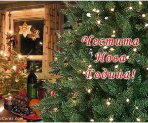 Двудневни Празнични новогодишни пакети - СБР Термал Варна