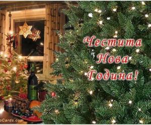 Еднодневни Празнични новогодишни пакети - СБР Термал Варна
